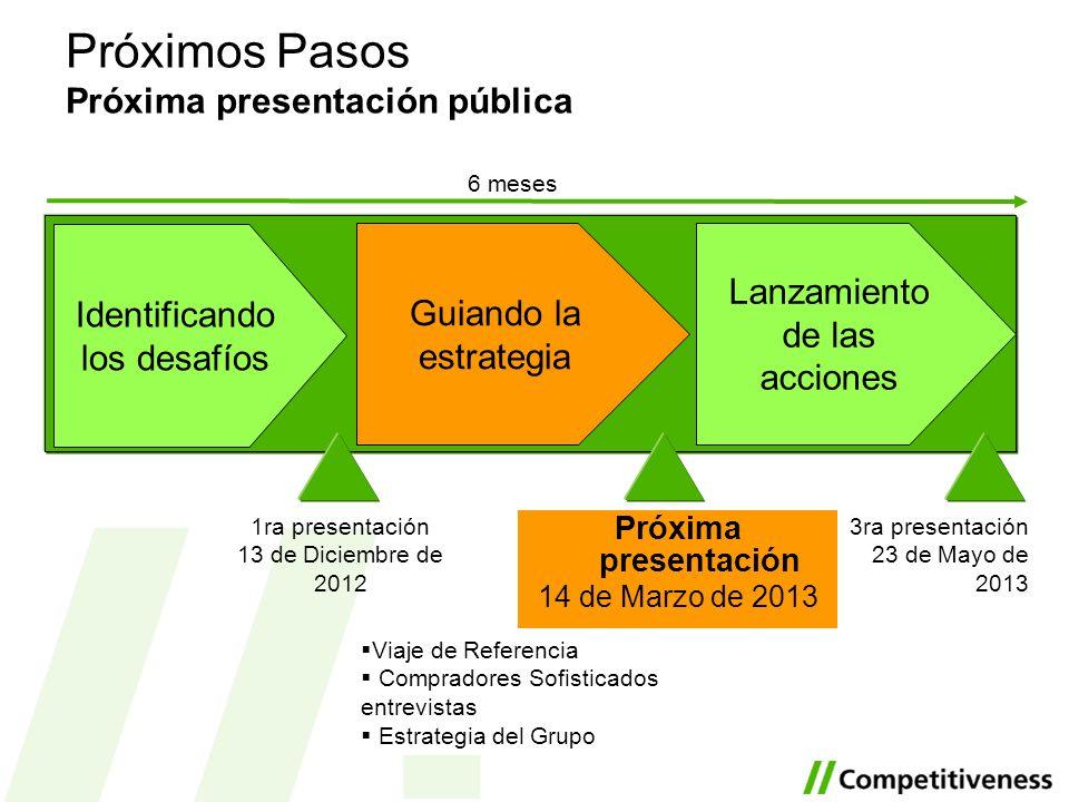 Próximos Pasos Próxima presentación pública