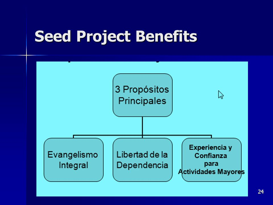 Seeds and Seed Projects