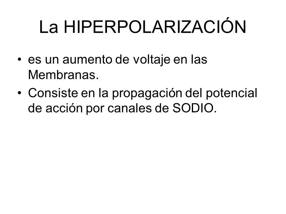 La HIPERPOLARIZACIÓN es un aumento de voltaje en las Membranas.