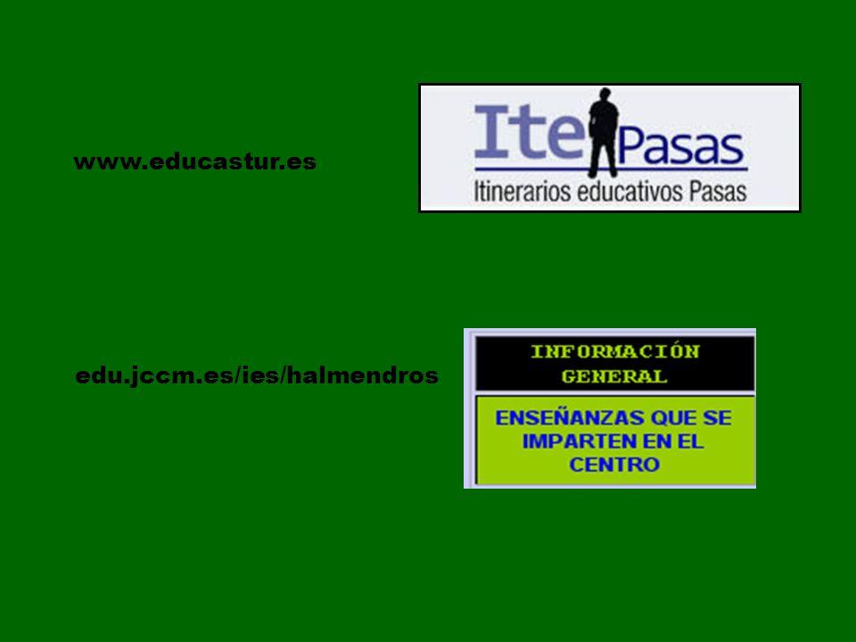 edu.jccm.es/ies/halmendros