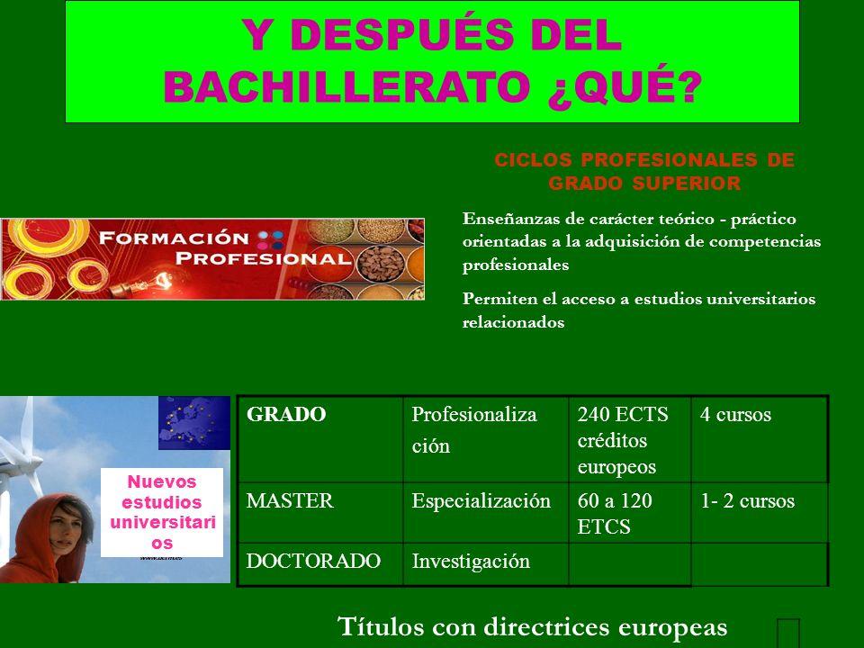 CICLOS PROFESIONALES DE GRADO SUPERIOR Nuevos estudios universitarios