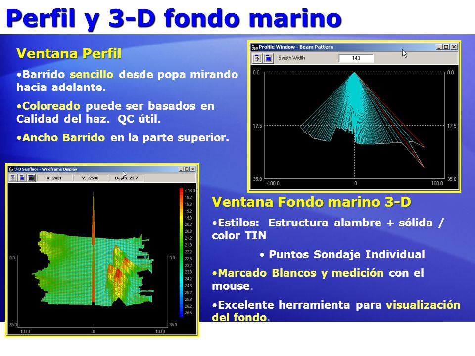 Perfil y 3-D fondo marino