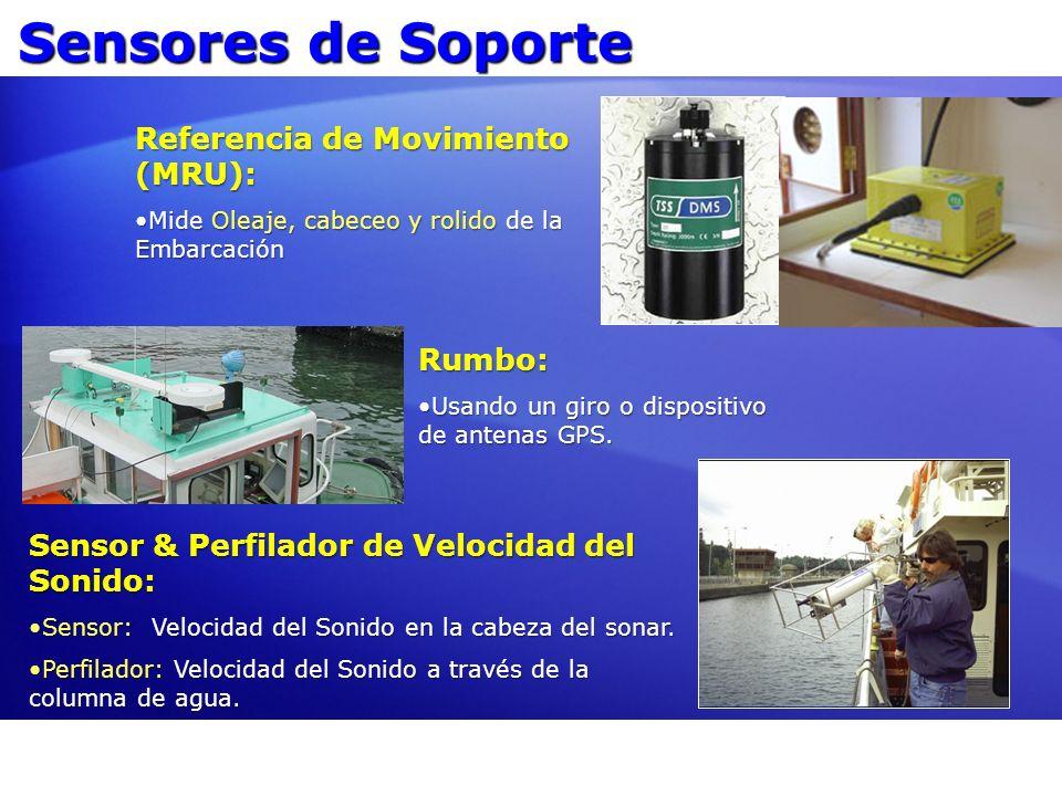 Sensores de Soporte Referencia de Movimiento (MRU): Rumbo: