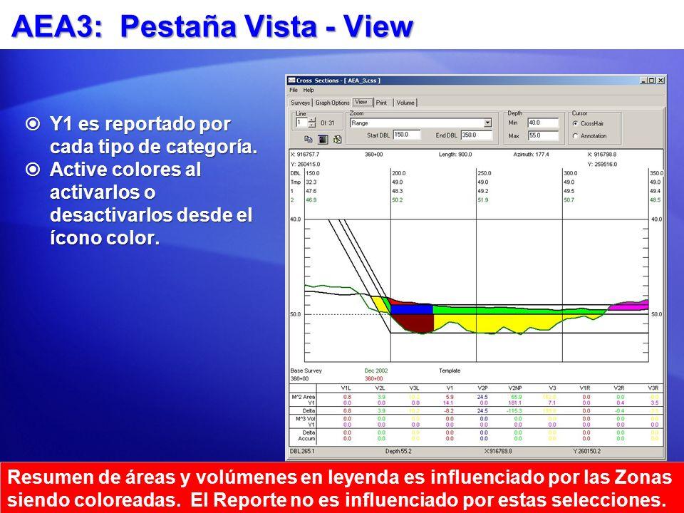 AEA3: Pestaña Vista - View