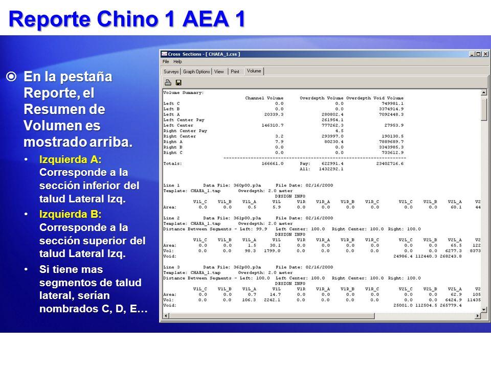 Reporte Chino 1 AEA 1 En la pestaña Reporte, el Resumen de Volumen es mostrado arriba.