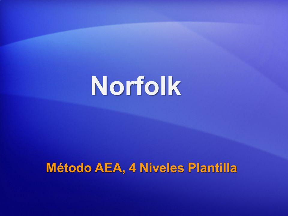 Método AEA, 4 Niveles Plantilla