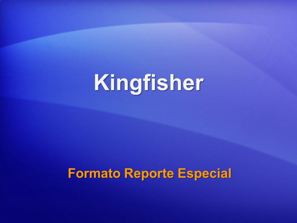 Formato Reporte Especial