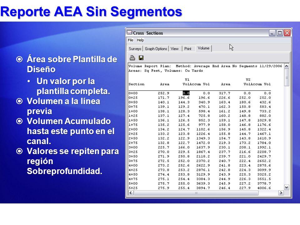 Reporte AEA Sin Segmentos