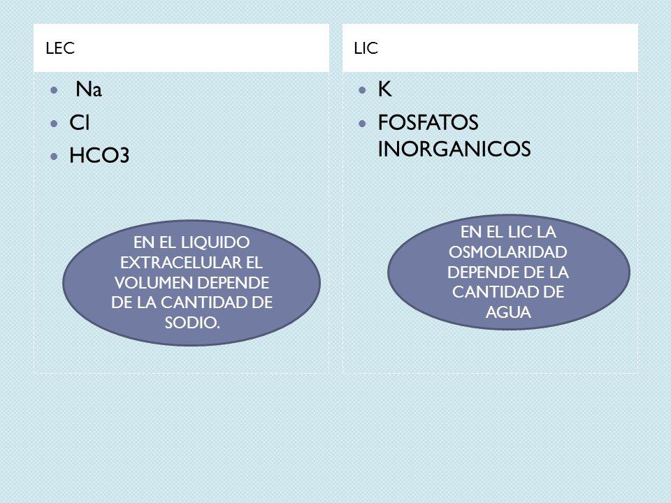 Na Cl HCO3 K FOSFATOS INORGANICOS LEC LIC
