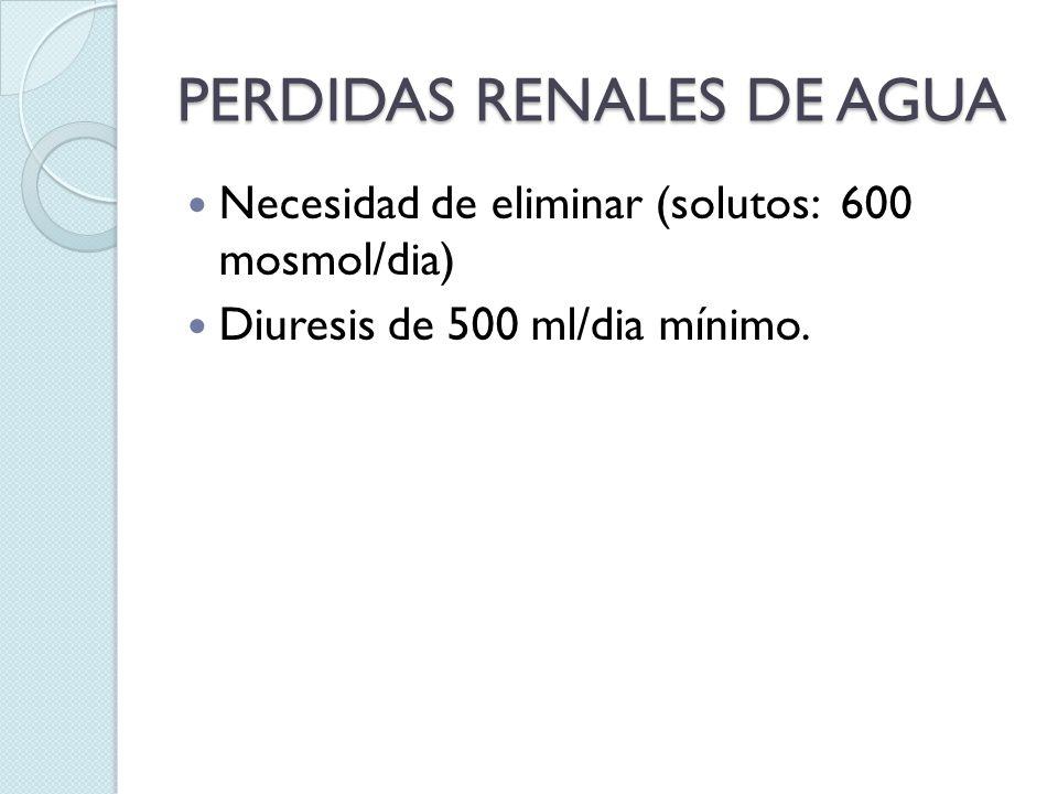 PERDIDAS RENALES DE AGUA