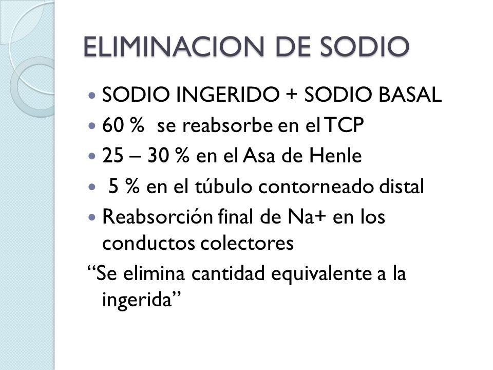 ELIMINACION DE SODIO SODIO INGERIDO + SODIO BASAL
