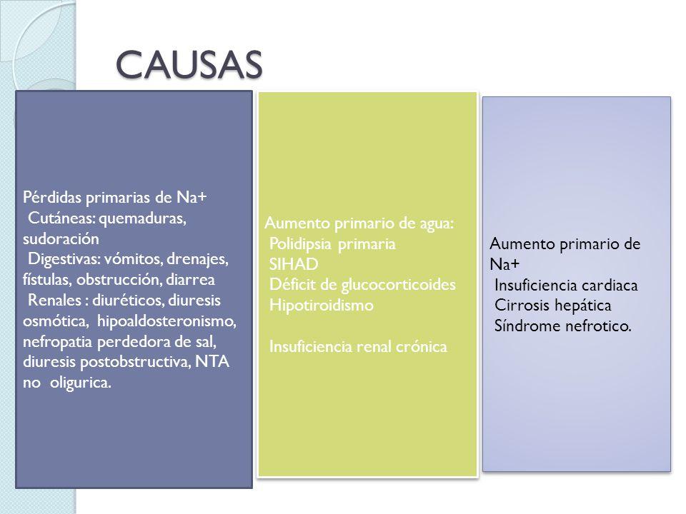 CAUSAS Pérdidas primarias de Na+ Cutáneas: quemaduras, sudoración
