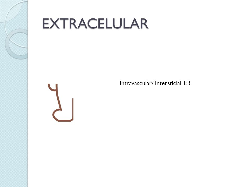 EXTRACELULAR Intravascular/ Intersticial 1:3