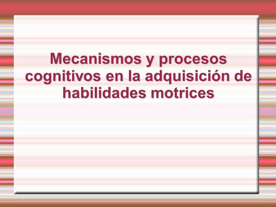Mecanismos y procesos cognitivos en la adquisición de habilidades motrices