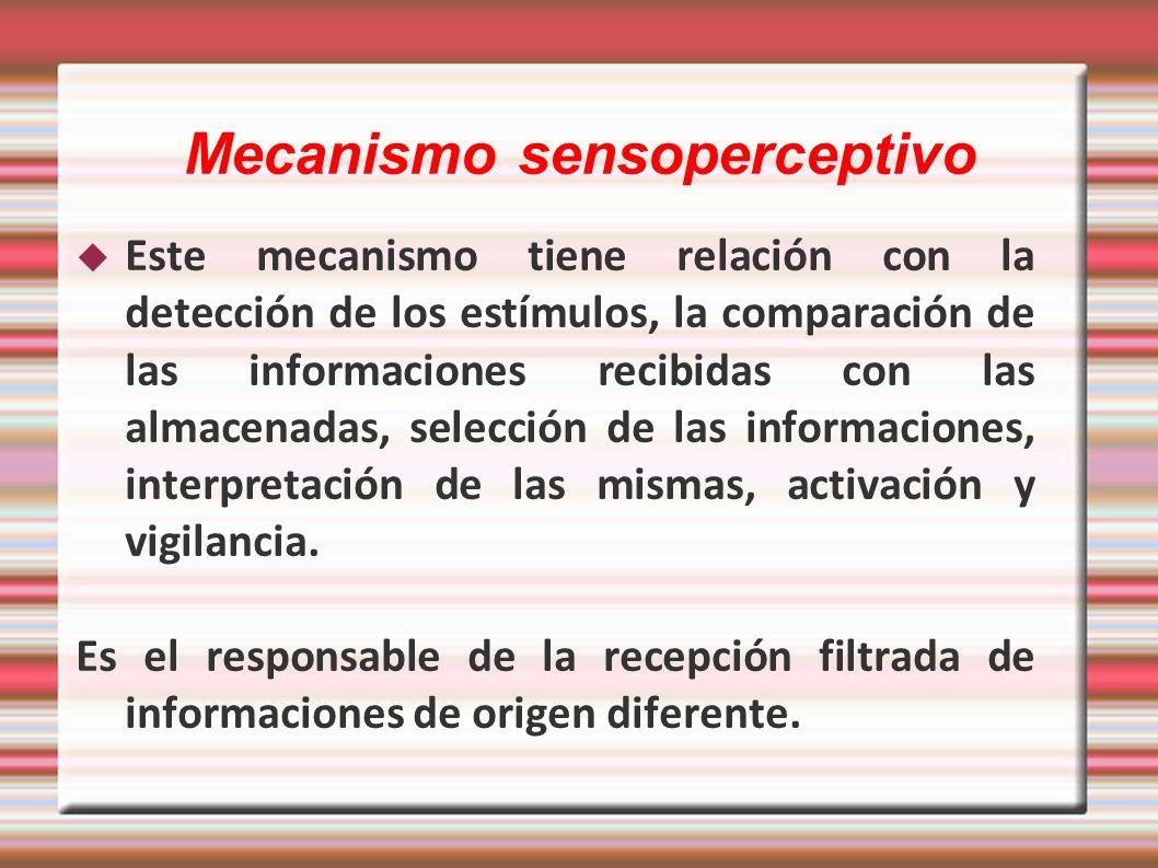 Mecanismo sensoperceptivo
