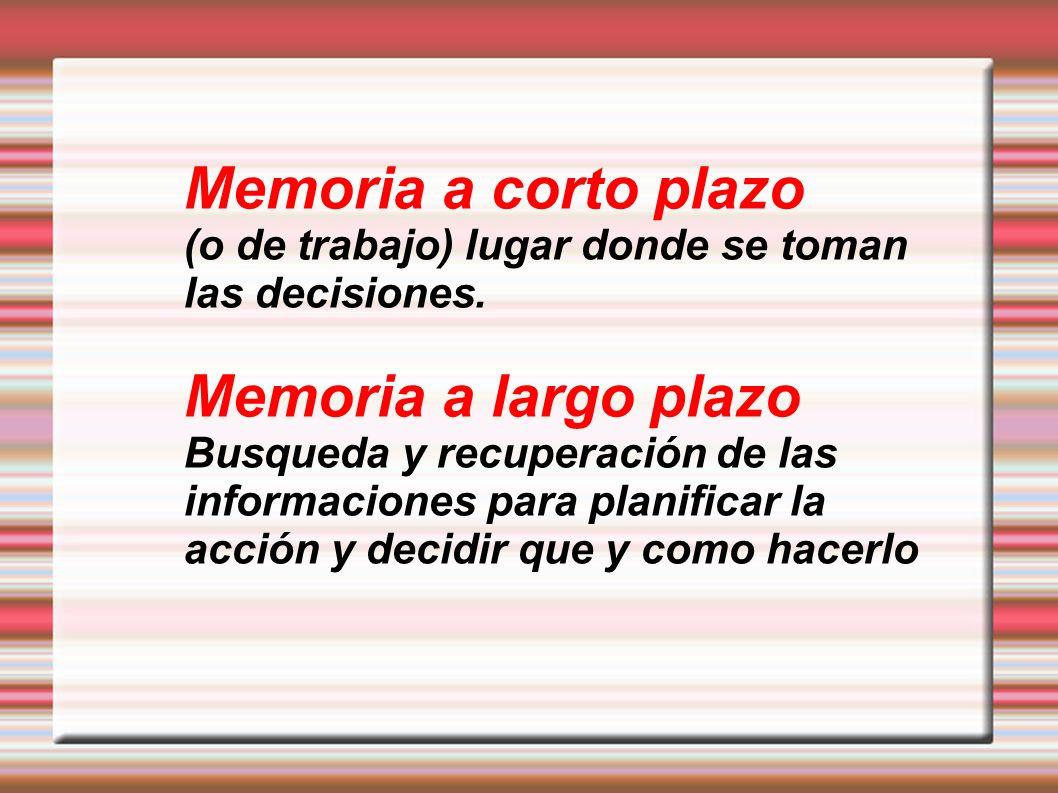 Memoria a corto plazo Memoria a largo plazo