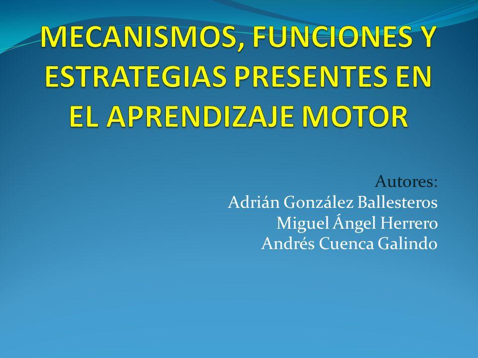 MECANISMOS, FUNCIONES Y ESTRATEGIAS PRESENTES EN EL APRENDIZAJE MOTOR