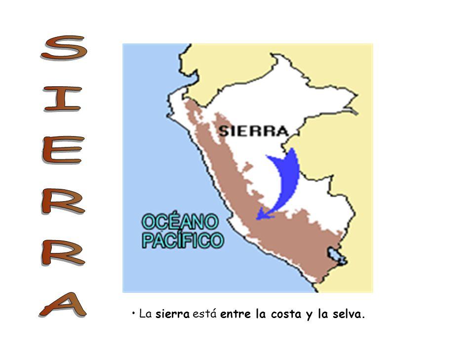 SIERRA La sierra está entre la costa y la selva.