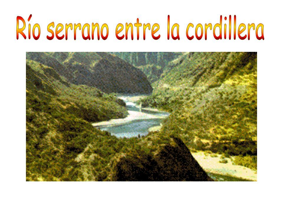 Río serrano entre la cordillera