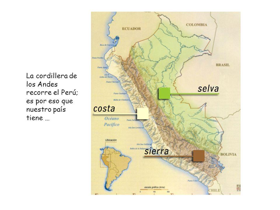 La cordillera de los Andes recorre el Perú; es por eso que nuestro país tiene …