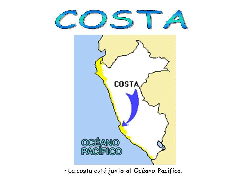 COSTA La costa está junto al Océano Pacífico.