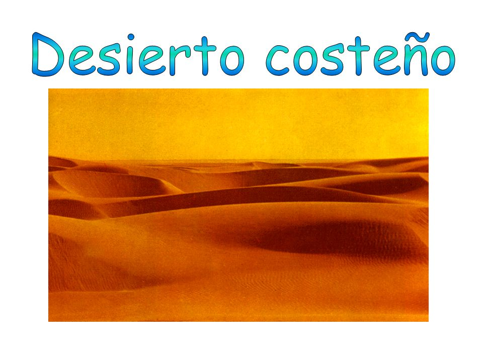 Desierto costeño