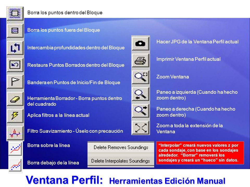 Ventana Perfil: Herramientas Edición Manual