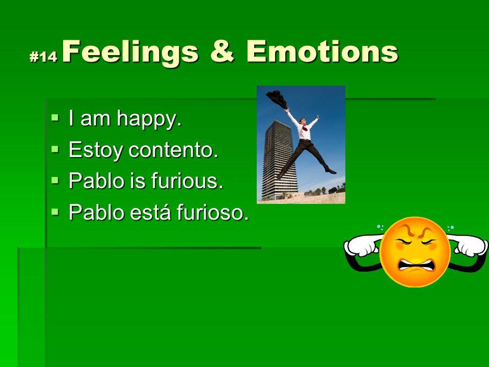 I am happy. Estoy contento. Pablo is furious. Pablo está furioso.