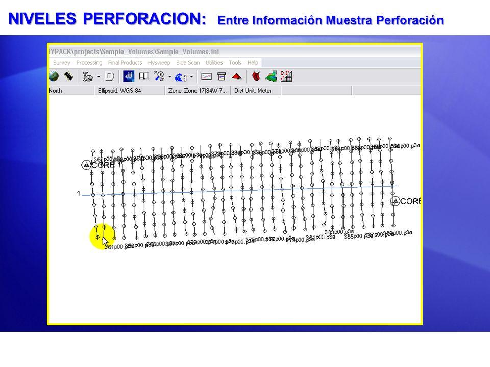 NIVELES PERFORACION: Entre Información Muestra Perforación