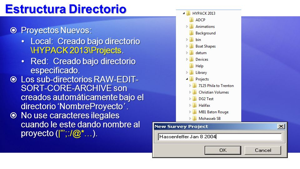 Estructura Directorio