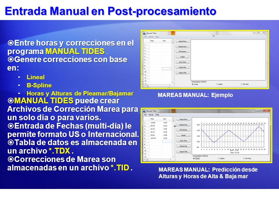 Entrada Manual en Post-procesamiento