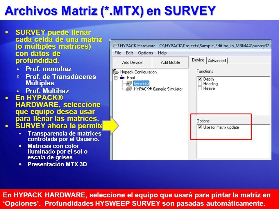 Archivos Matriz (*.MTX) en SURVEY