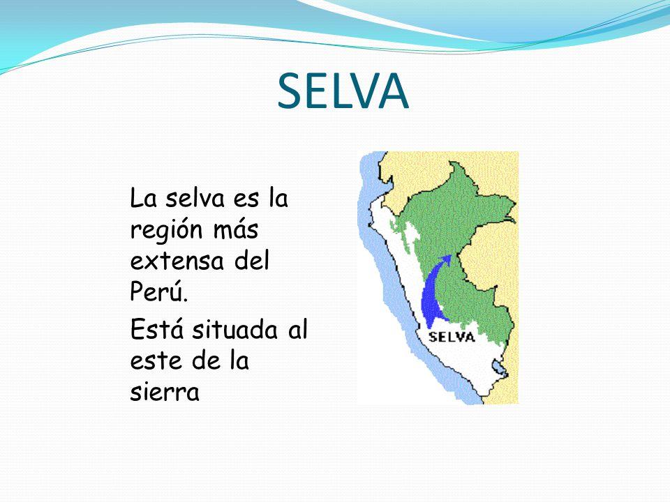 SELVA La selva es la región más extensa del Perú.
