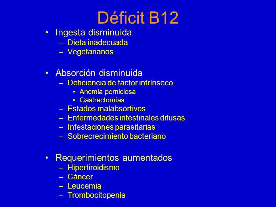 Déficit B12 Ingesta disminuida Absorción disminuida