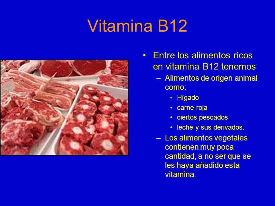 Vitamina B12 Entre los alimentos ricos en vitamina B12 tenemos