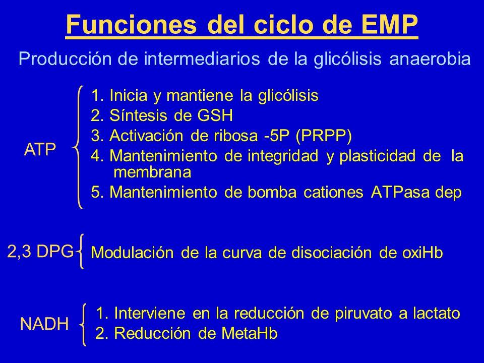 Funciones del ciclo de EMP