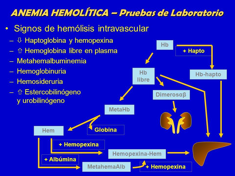ANEMIA HEMOLÍTICA – Pruebas de Laboratorio