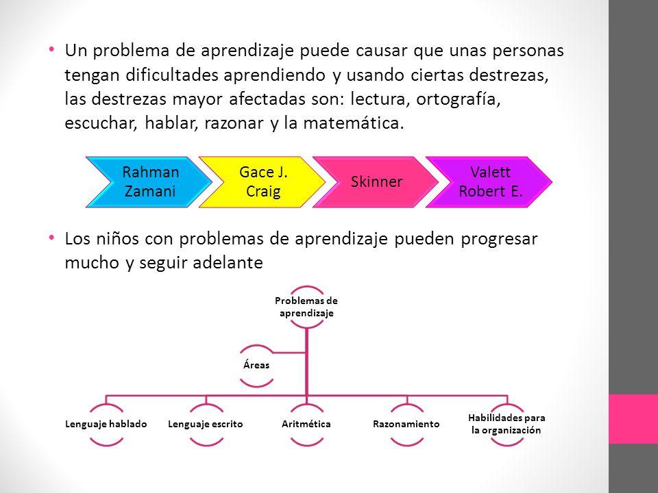 Problemas de aprendizaje Habilidades para la organización