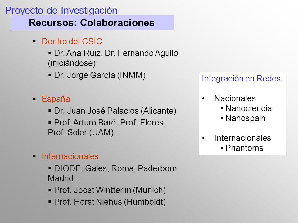 S ntesis caracterizaci n y propiedades de materiales for Proyecto de investigacion de plantas ornamentales