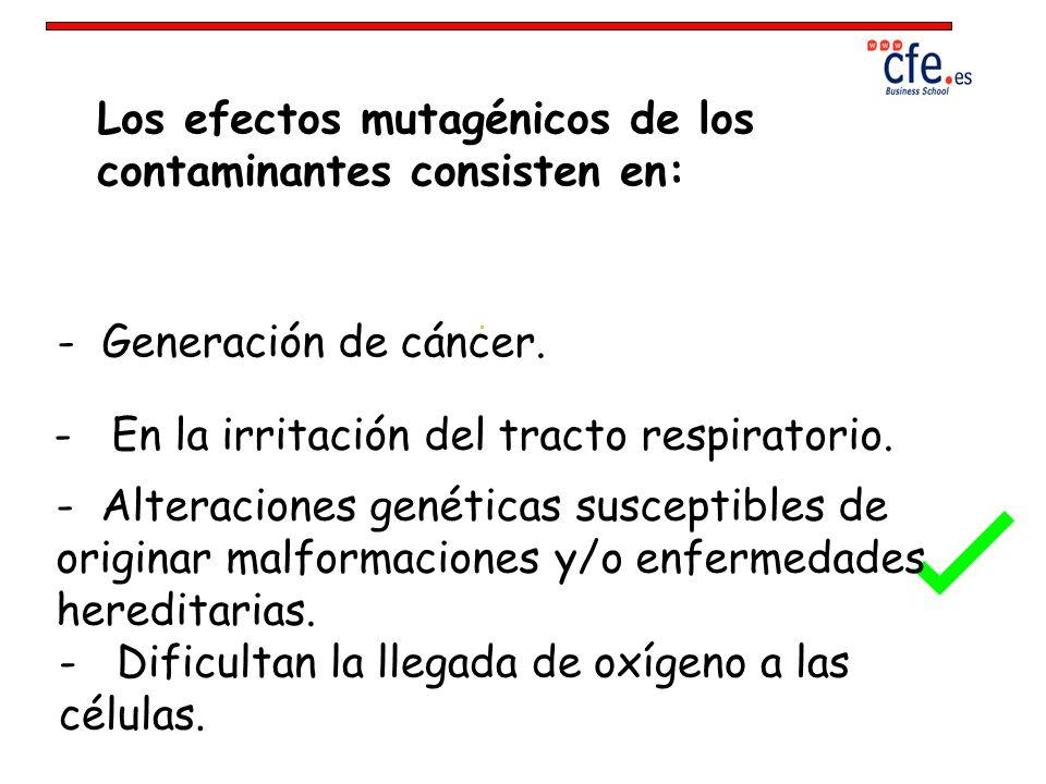 Los efectos mutagénicos de los contaminantes consisten en: