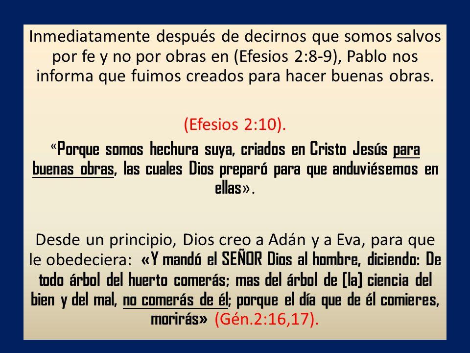 Inmediatamente después de decirnos que somos salvos por fe y no por obras en (Efesios 2:8-9), Pablo nos informa que fuimos creados para hacer buenas obras.