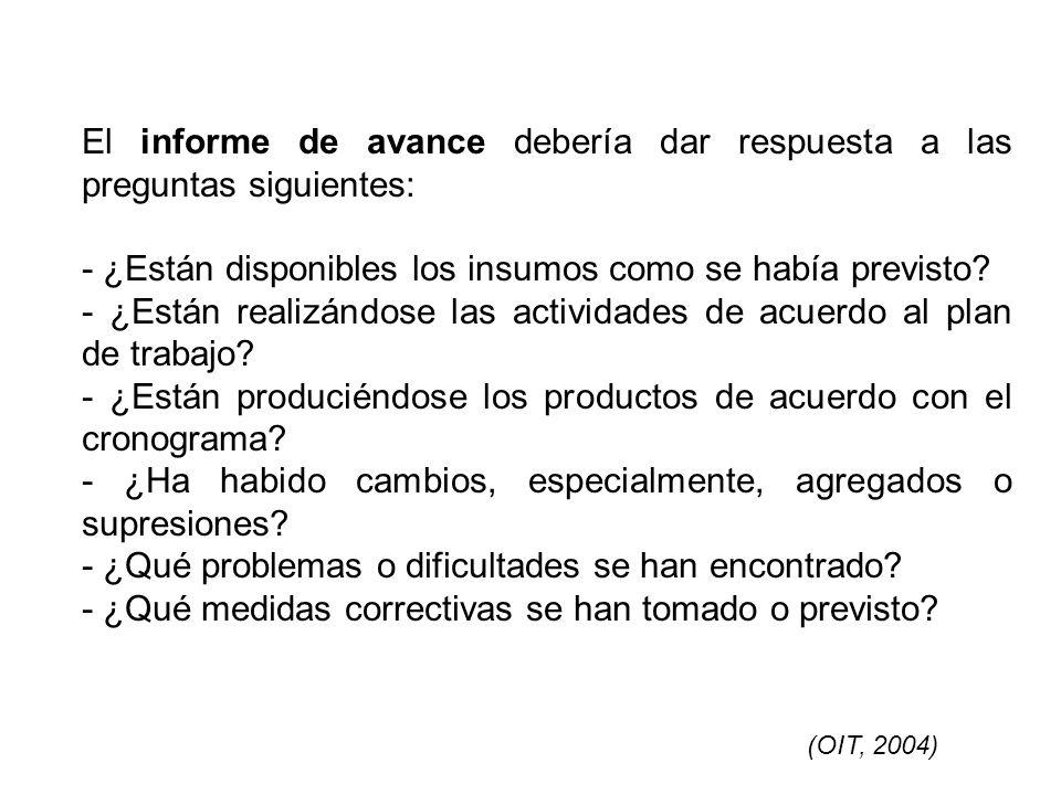 El informe de avance debería dar respuesta a las preguntas siguientes: