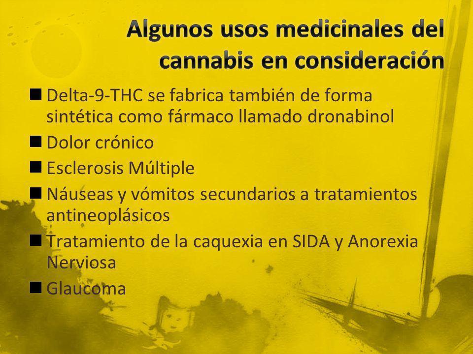 Algunos usos medicinales del cannabis en consideración