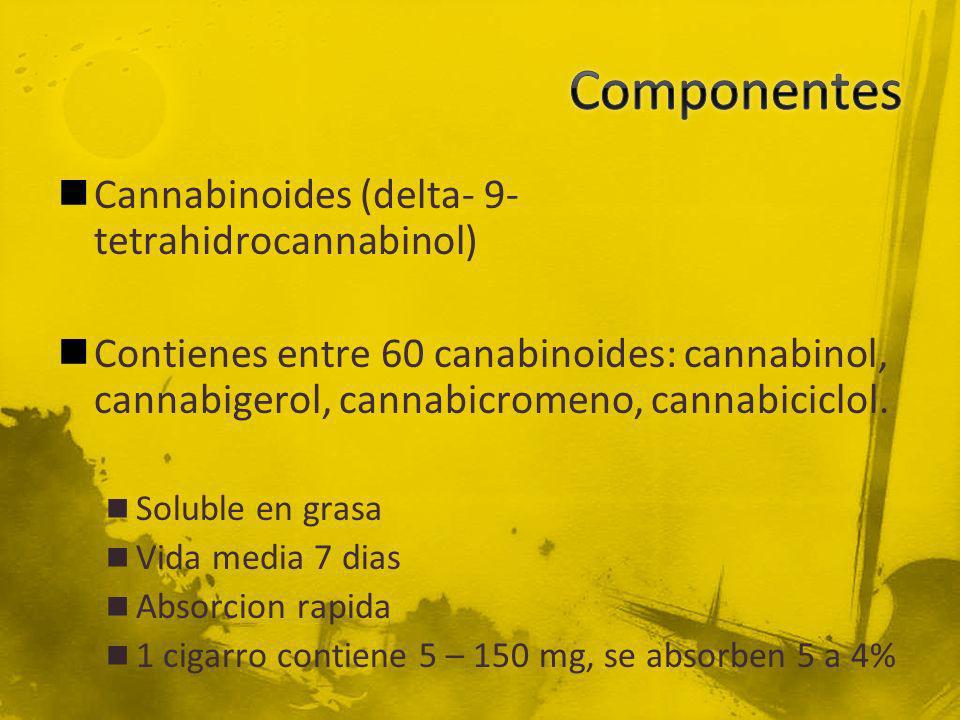 Componentes Cannabinoides (delta- 9- tetrahidrocannabinol)