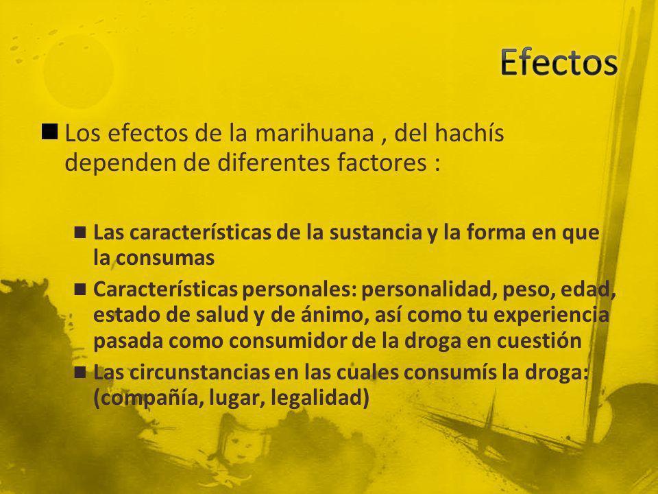 EfectosLos efectos de la marihuana , del hachís dependen de diferentes factores : Las características de la sustancia y la forma en que la consumas.