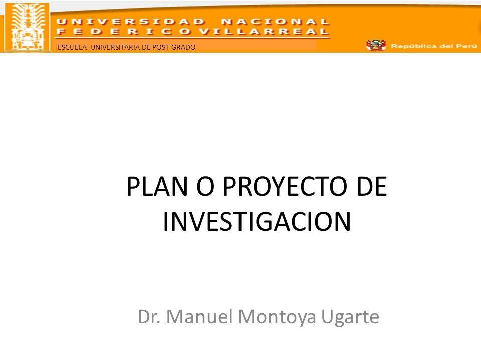 PLAN O PROYECTO DE INVESTIGACION