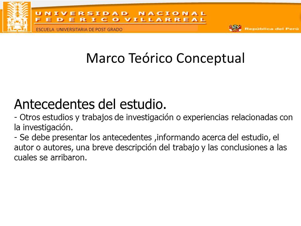 Marco Teórico Conceptual