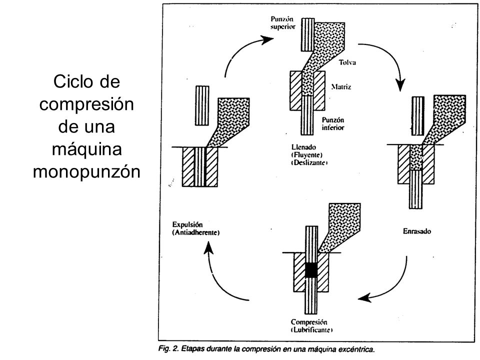 Ciclo de compresión de una máquina monopunzón