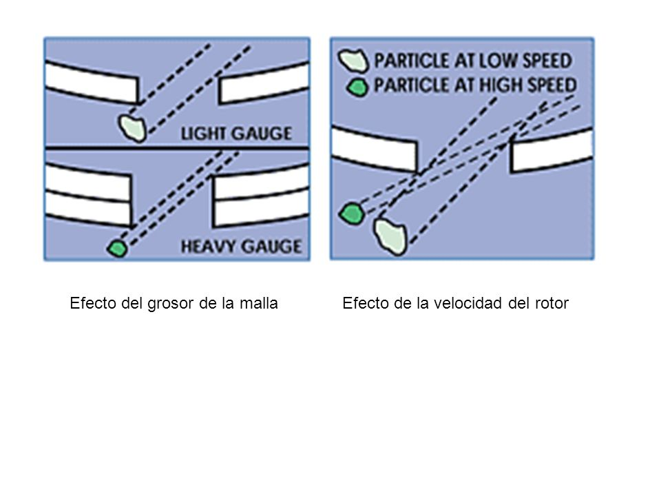 Efecto del grosor de la malla Efecto de la velocidad del rotor