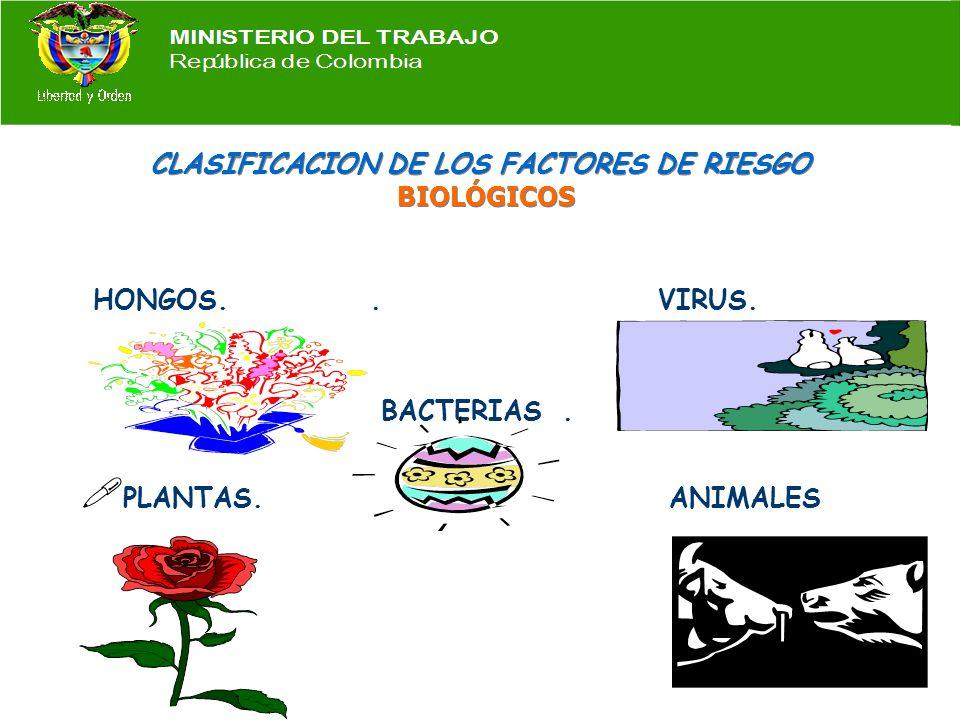 CLASIFICACION DE LOS FACTORES DE RIESGO BIOLÓGICOS
